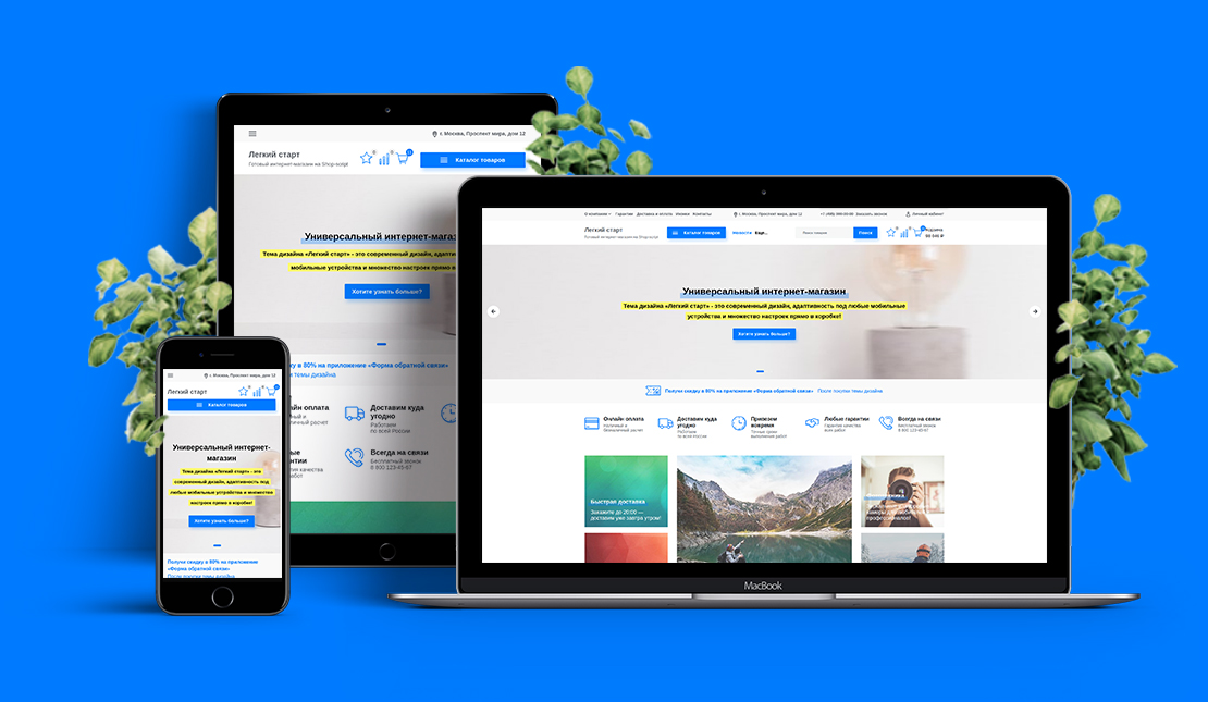 Создание, продвижение сайтов в Щелково